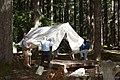 2013 Longmire Campground Opening 3 (9010534649).jpg