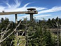 2017-05-17 13 23 39 View from halfway up the ramp to the Clingmans Dome Observation Tower in Great Smoky Mountains National Park, on the border of Sevier County, Tennessee and Swain County, North Carolina.jpg