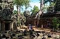 20171128 Ta Prohm Angkor 5363 DxO.jpg
