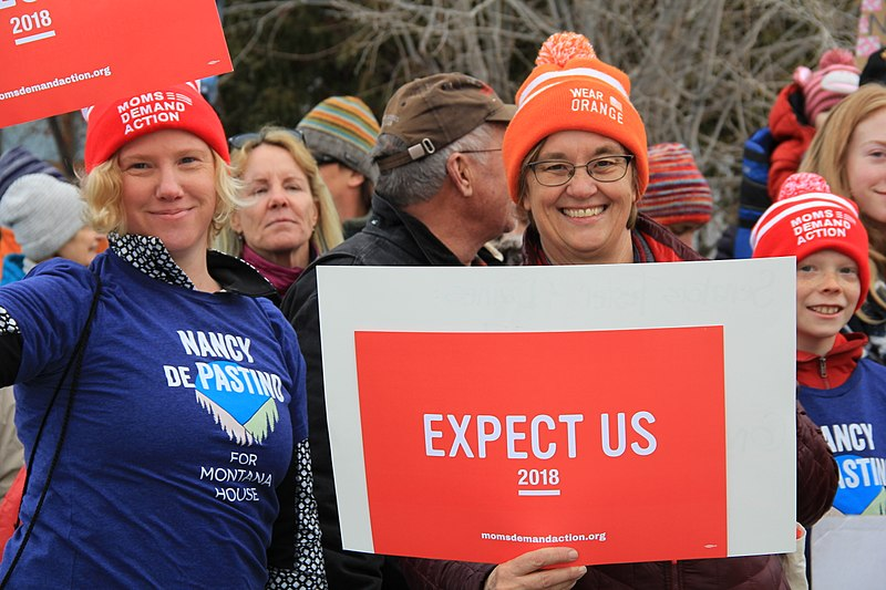 File:2018 Women's March in Missoula, Montana 107.jpg