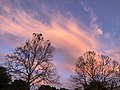 2020-05-27 05 44 57 Sunrise along Tranquility Court in the Franklin Farm section of Oak Hill, Fairfax County, Virginia.jpg