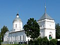 21 Дмитровский Погост - Церковь Дмитрия Солунского (2009).jpg