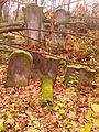 21 listopada 2013 - cmentarz żydowski kon XVII Szydłowiec - 4.jpg