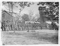 21st Michigan Infantry - NARA - 524713.tif