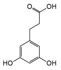3,5-dihydroxyphenylpropionic acid.png