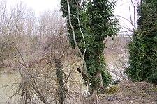 43 Valladolid Boecillo rio Duero lou.jpg