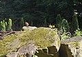 46-107-5007 Моршинський курортний парк.jpg