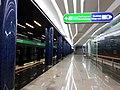 "6556.2. St. Petersburg. Metro station ""Zenit"".jpg"