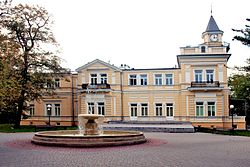 A-664 z 4012006 Pałacyk Sokoła 1867.jpg