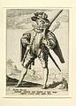 A Musketeer (6124499199).jpg