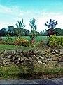 A Roadside Garden - geograph.org.uk - 452195.jpg