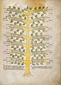 A Tree of twenty vices and twenty virtues Wellcome L0029368.jpg