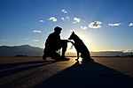 A dog and his handler, a working relationship 160614-F-SO188-382.jpg