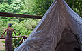 A hammock in the selva, Misiones, Argentina, 9th. Jan. 2011 - Flickr - PhillipC.jpg