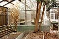 Abandoned Green House 2 (5772717232).jpg