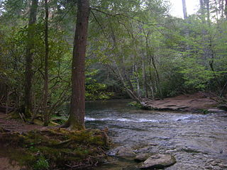 Hiking in the Great Smoky Mountains National Park Wikimedia list article