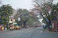 Acharya Prafulla Chandra Road - Kolkata 2014-02-23 9438.JPG