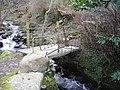 Afon Llan - geograph.org.uk - 351421.jpg