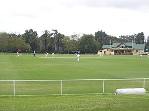 Albert Cricket Ground in 2014