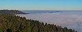 Albis Nebelmeer 20200122.jpg