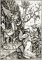 Albrecht Dürer - Joachim et l'Ange.jpg