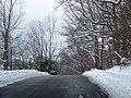 Alleghany, Blacksburg, VA 24060, USA - panoramio.jpg
