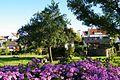 Allmend Gärten - panoramio.jpg