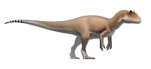 Dating av dinosaurie ben