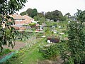 Allotment gardens from Park Avenue - geograph.org.uk - 967271.jpg