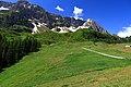 Alpi svizzere in estate.jpg
