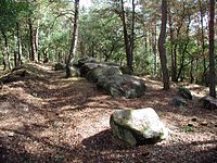 Am-Steingrab.jpg