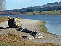 Am Ufer des Rottachsees - panoramio.jpg