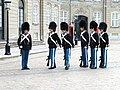 Amalienborg Palace guards - DSC07143.JPG