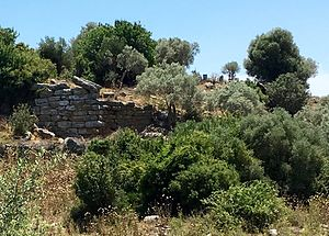 Bargylia - The ruins of a containing or defensive wall at Bargylia.