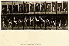 Animal locomotion. Plate 165 (Boston Public Library).jpg
