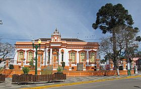 Palmeira Paraná fonte: upload.wikimedia.org