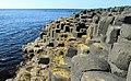 Antrim Coast - Giant's Causeway (19247071624).jpg