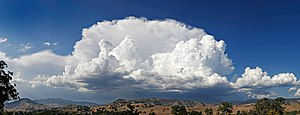 Anvil shaped cumulus panorama.jpg
