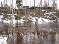 April highwater - panoramio - S Petr.jpg