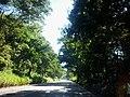 Araguari - State of Minas Gerais, Brazil - panoramio.jpg