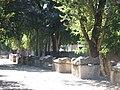 Arles Alyscamps 06.jpg