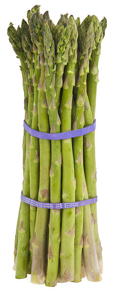 Asparagus Bundle - courtesy of Wikipedia