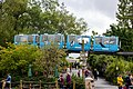 At Chester Zoo 2019 005.jpg