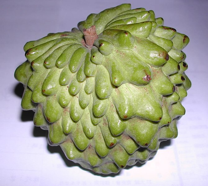 File:Atemola (cross of Annona cherimola and Annona squamosa).jpg