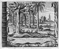 "Athanasii Kircheri... China monumentis (1667) ""Serpens Capillatus, Lusitanis. Cobra de Cabelo"" (22654876045).jpg"