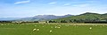 Athol-Five Rivers Hwy, South Island (482973) (24301143214).jpg