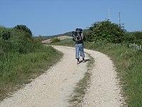 Auf dem Weg nach San Juan de Ortega - panoramio (1).jpg