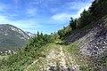 Auronzo di Cadore - trail.jpg