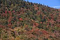 Autum Colours New Hampshire 3 (6235051374).jpg