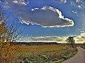 Autumn field (24291856898).jpg